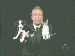 John Stewart has a puppy for the Democrats and a Kitten for the Republicans about Hurrican Katrina