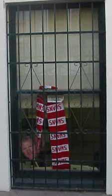 Rabid swannies fan's office window