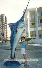 Marlim azul - Vila Velha - ES