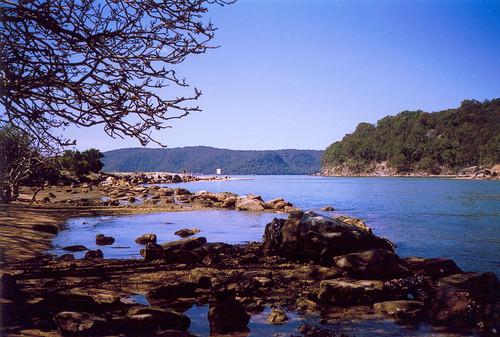 Patonga Creek III