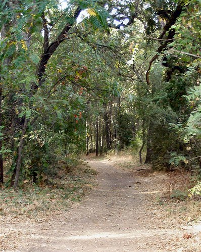 Bidwell Park Dirt Path
