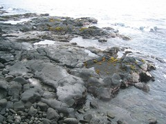 Black Volcanic Rock in Kona