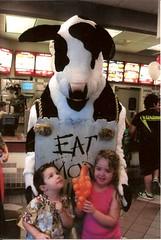 Chik-fil-a cow