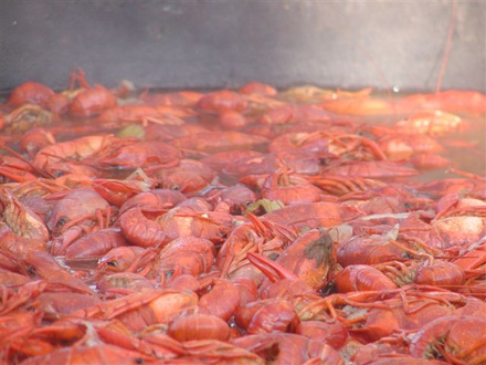 Crawfish Boil, not mine