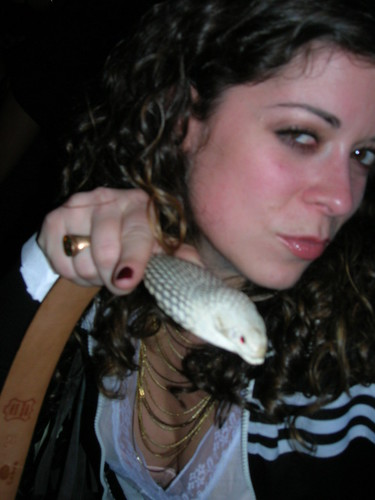 kelly & snake