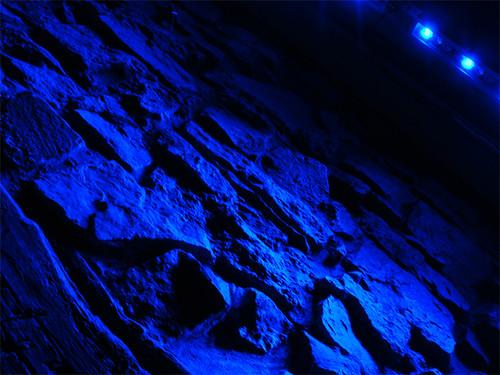 DSC01263_blue_wall