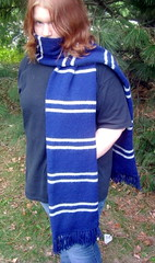 Ravenclaw Azkaban scarf