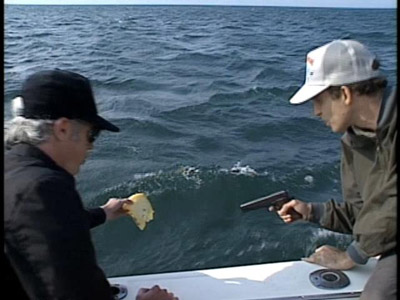 Shark Fishing picture 1