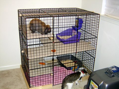 A better rabbit cage themike 39 s thoughts - How to make a rabbit cage ...