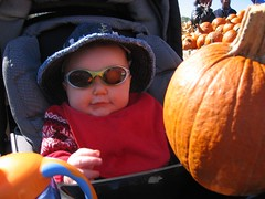 Chillin' in the pumpkin patch