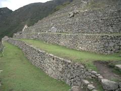 Machu Picchu - 24 - Terraces