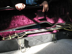 Guitar case