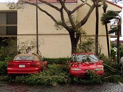Hurricane Wilma 2
