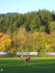 Fußball, gutes Wetter, Windräder...Freiburg!