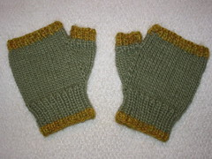 A Pair of Fingerless Gloves