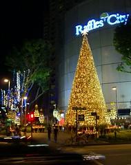 Christmas Lightup