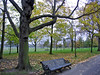 Regent's Park I