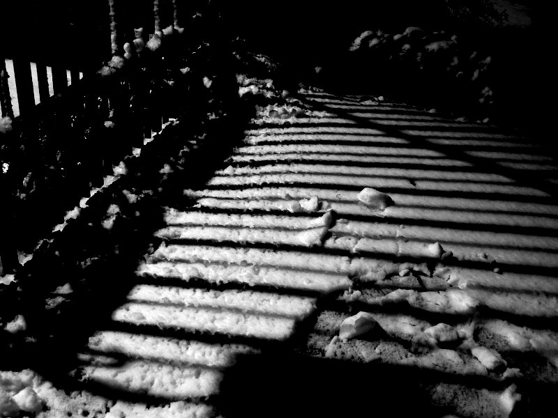 Fence at Night and the Snow