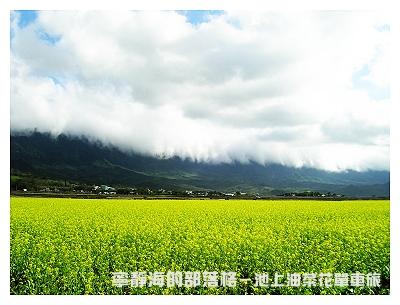 夏季感冬之旅_0118_池上油菜花與雲瀑