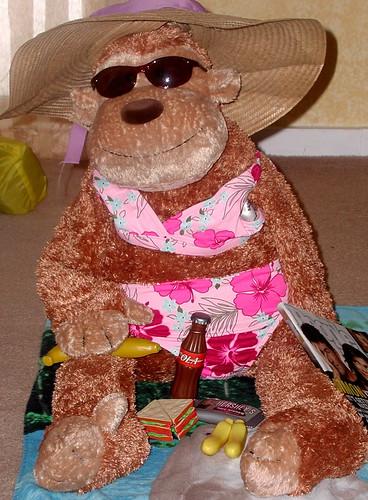 picnic monkey
