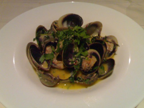Littleneck Clams NZ