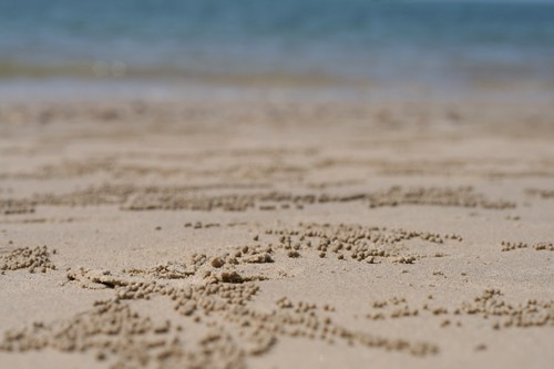 nopparat thara beach (by mintyfreshflavor)