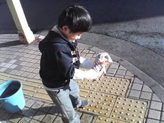 今日もお手伝い / A dustcloth (by detch*)