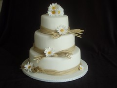 Daisy and Raffia wedding cake photo by JaneBK