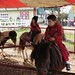 Jack on a Pony Ride