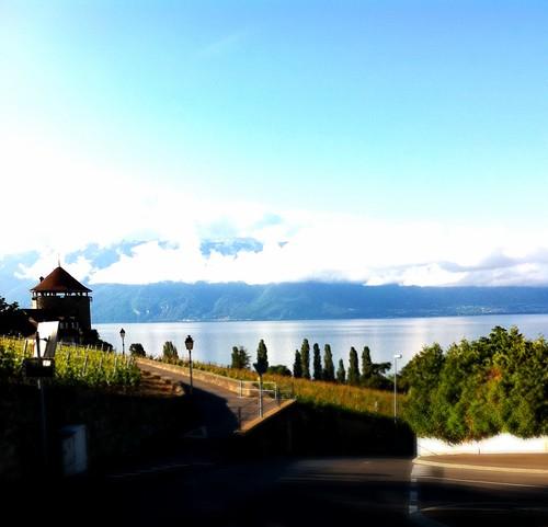 Lac Léman depuis Lutry