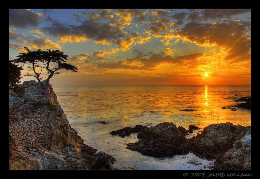 Sunset At The Lone Cypress At Pebble Beach