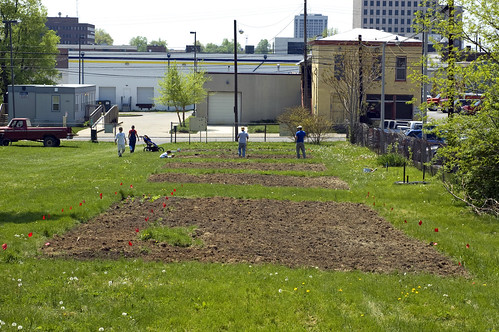 London Ferrill Community Garden