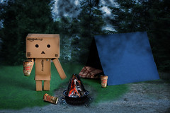 Danbo Goes To Camp photo by Chaos2k