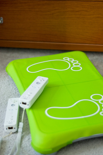 Wii Fit Protect Kit