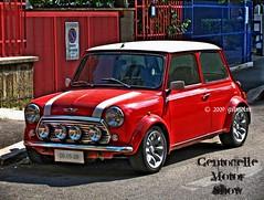 Mini Cooper photo by gilmolm