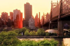 manhattanhenge & the 59th street bridge photo by mudpig