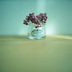 minimalism* photo by miki**