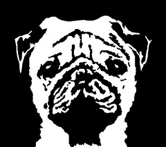 Pug Black & White Stencil Dog Art Print photo by Pupaya
