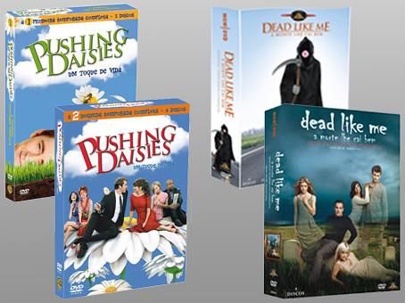 Dvds copy