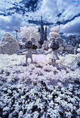 Disney Infrared: Mickey & Minnie Mouse Pose In The Cinderella Castle Rose Garden photo by Tom.Bricker