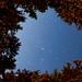 Rolley Lake Star trail