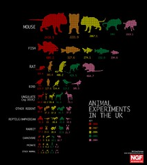 Animal Experiments in the UK photo by GDS Infographics