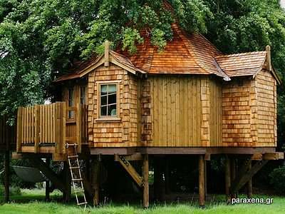 Amazon-Tree-Houses-05