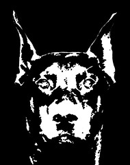 Doberman Black & White Stencil Dog Art Print photo by Pupaya