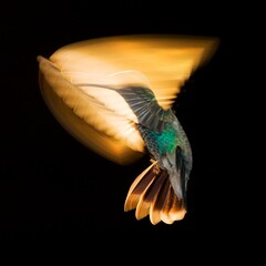 """ Ray of Light "" photo by Alfredo11"