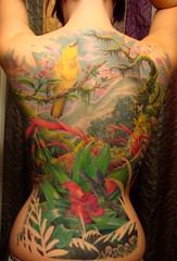 Full rainforest backpiece - Complete photo by crecia