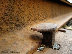 Rail spike | photo by *Arielle*
