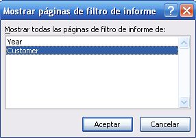 2 mostrar paginas de filtro de informes pivot table Microsoft Office Excel 2007