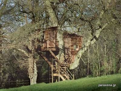 Amazon-Tree-Houses-03