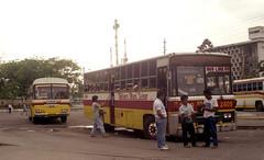 Binan Bus Line DVB-xxx (fleet No 2409) Laguna Trans Hino DVY-126 (fleet No 5789) in the Lawton area of Manila, Philippines. photo by express000